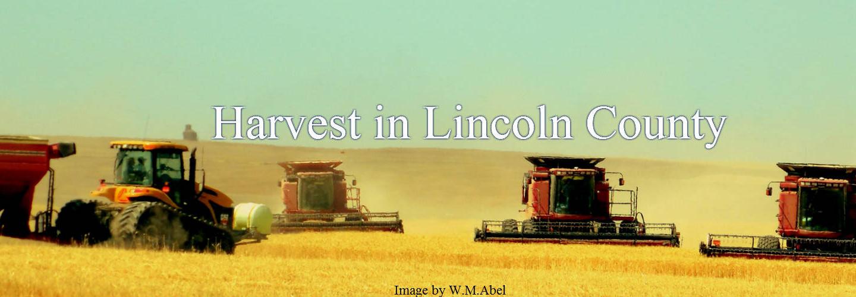 wheat harvest resized